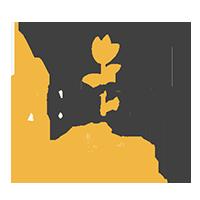 tiGraphy Logo